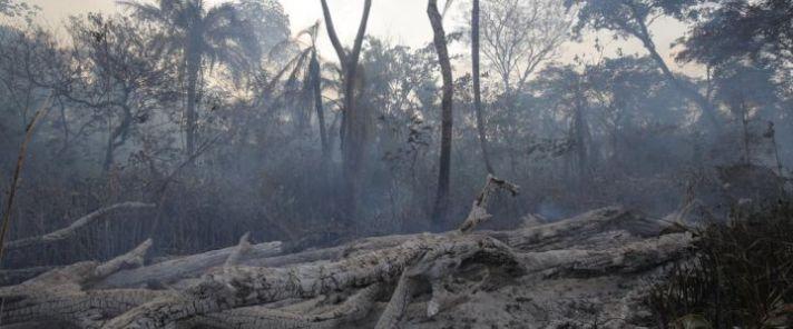 Amazzonia-bruciata-720x300